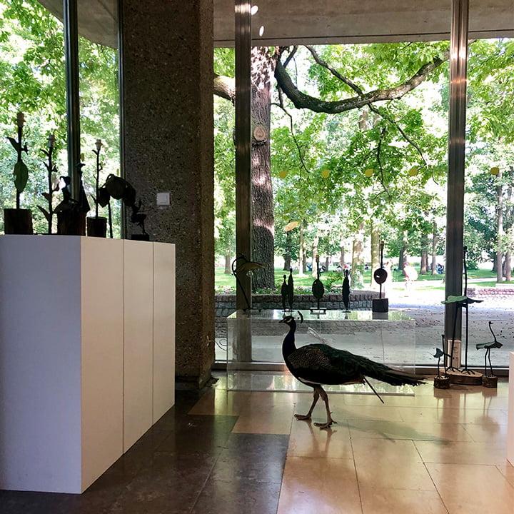Espace City'zen Paris exposition Hamado Zoundi