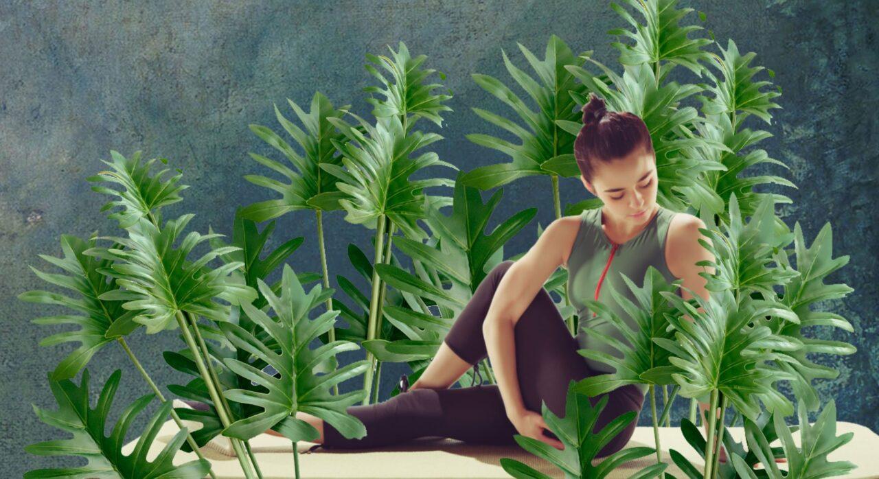 Cours de stretching postural à L'Espace City'zen Paris