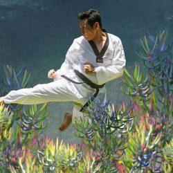 cours de kung fu dahara espace city zen paris